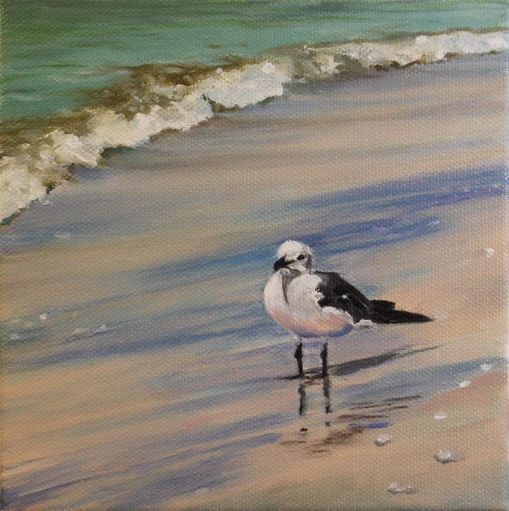 """Sea gull"" original fine art by Beverley Phillips"
