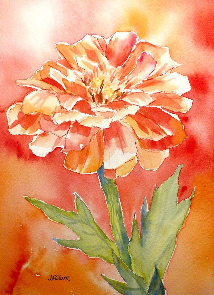 """Zinnia Solo"" original fine art by Judith Freeman Clark"