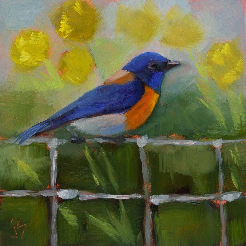 """""""Western Bluebird"""" original fine art by Johnna Schelling"""