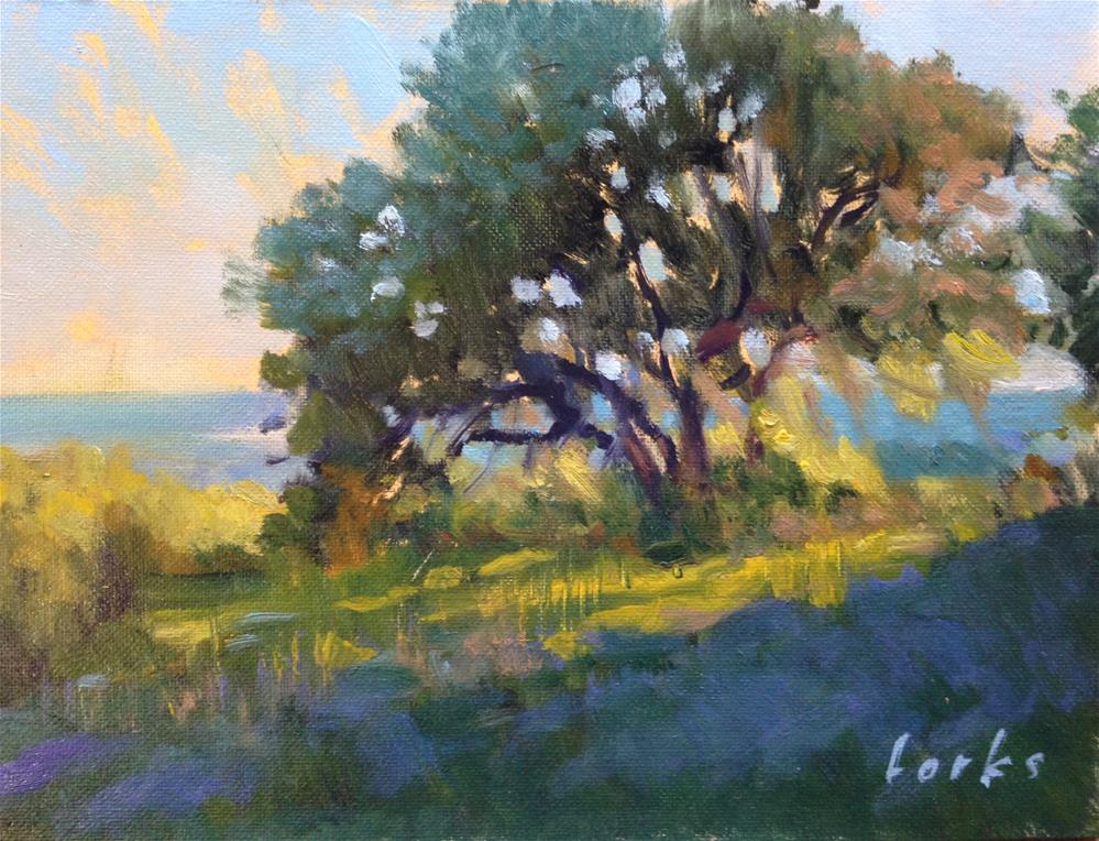"""""""Late Afternoon Hill Top, Bulverde, Texas"""" original fine art by David Forks"""