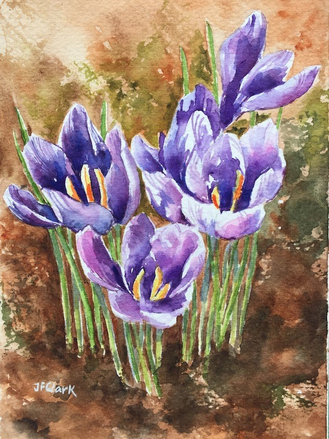 """Harbinger of Spring"" original fine art by Judith Freeman Clark"