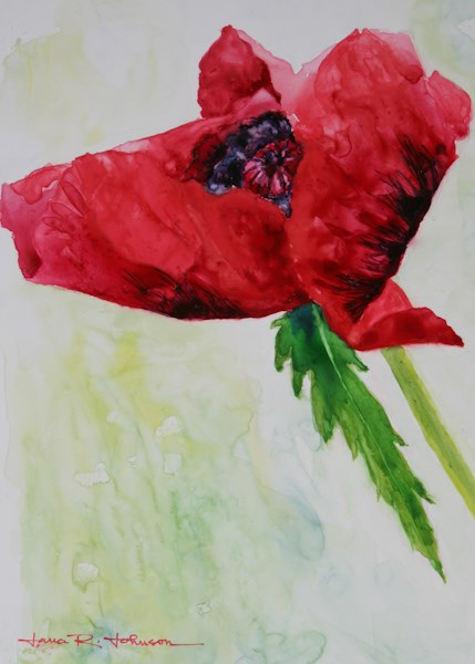 """Rainy Day Poppy 2"" original fine art by Jana Johnson"