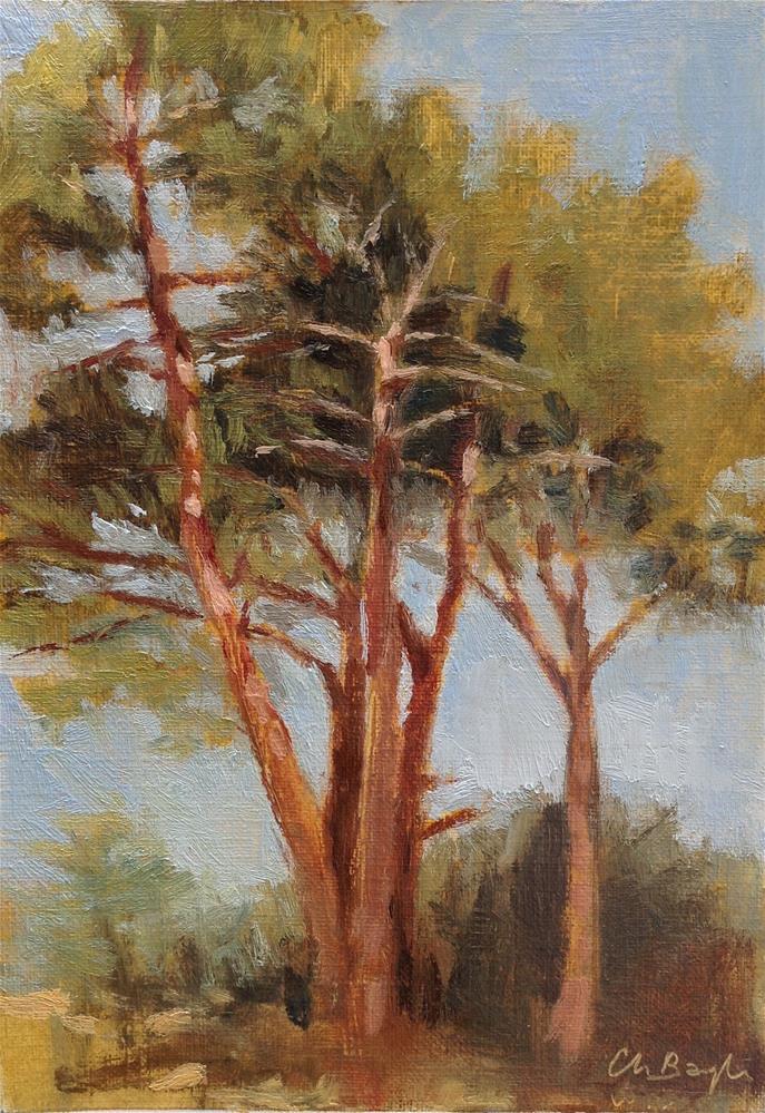 """Tree study"" original fine art by Christine Bayle"