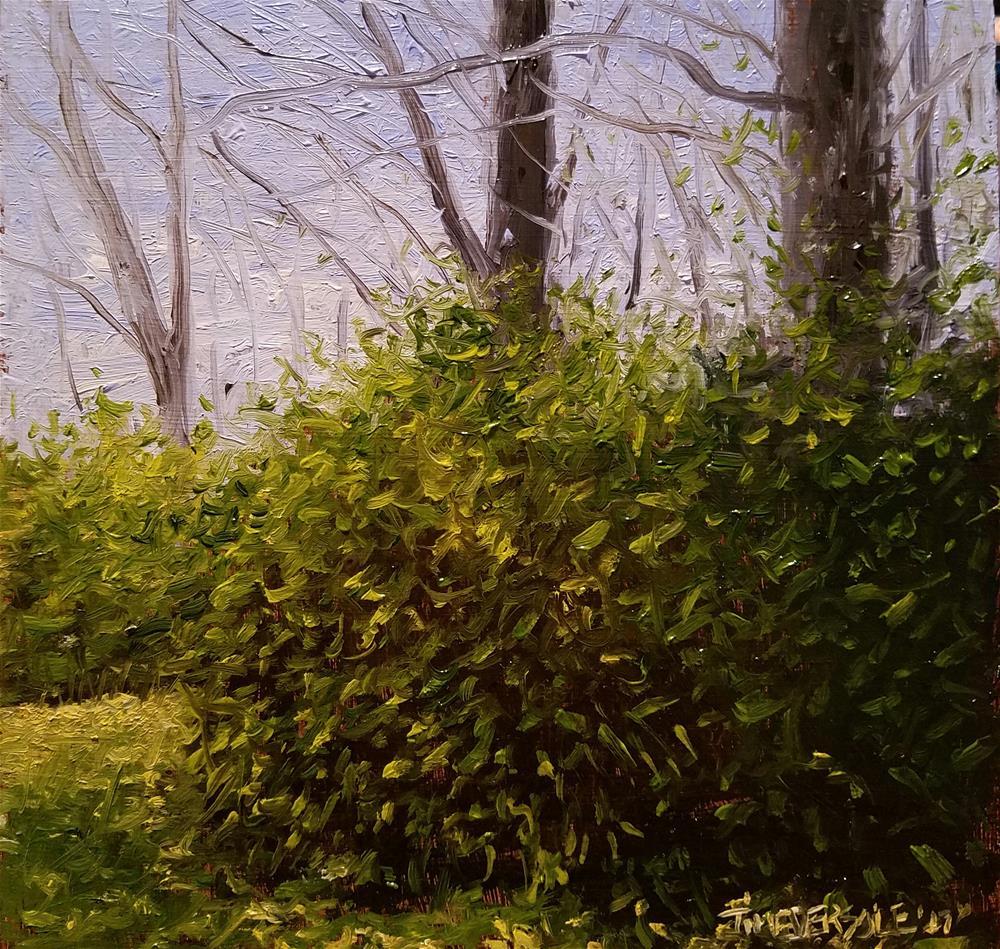 """Falls Last Colors "" original fine art by timothy eversole"