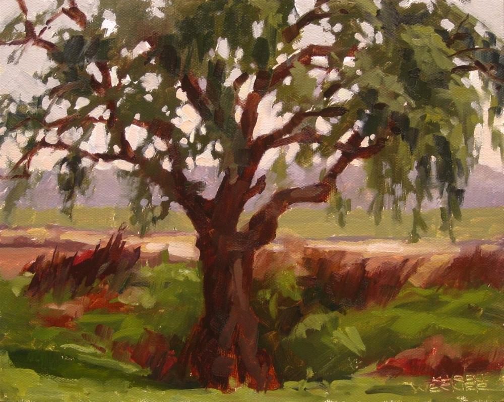 """California Pepper"" original fine art by Karen Werner"