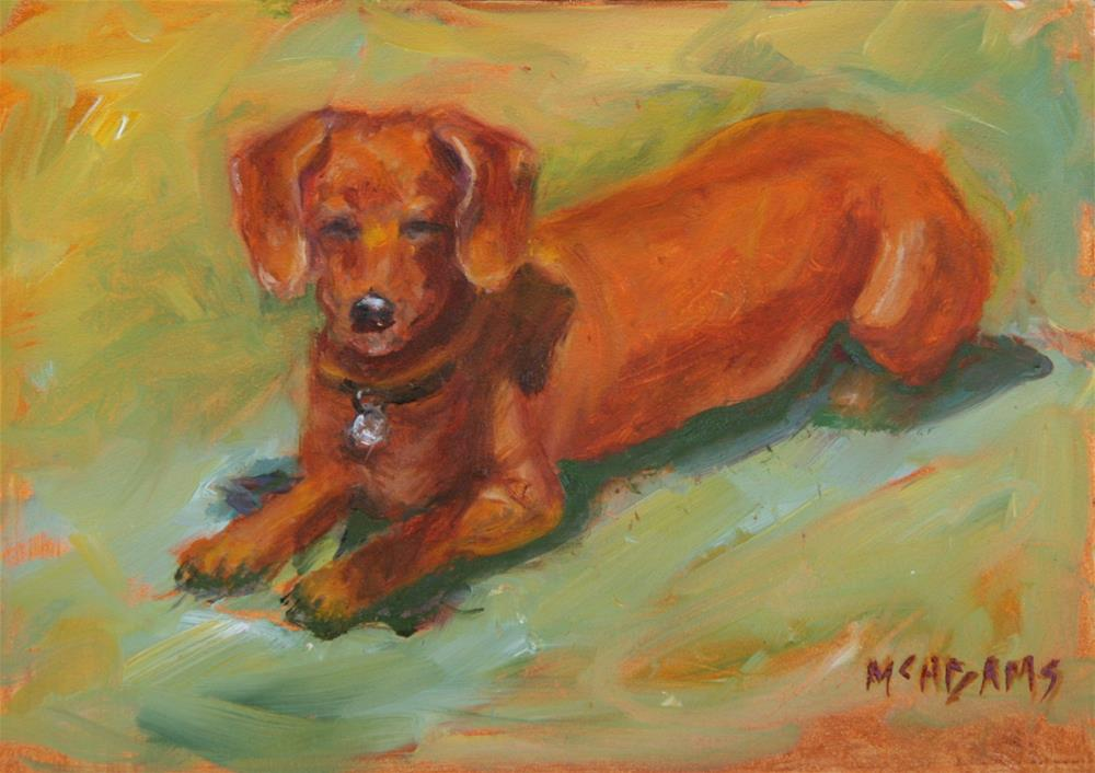 """The Doxie"" original fine art by Phyllis McAdams"