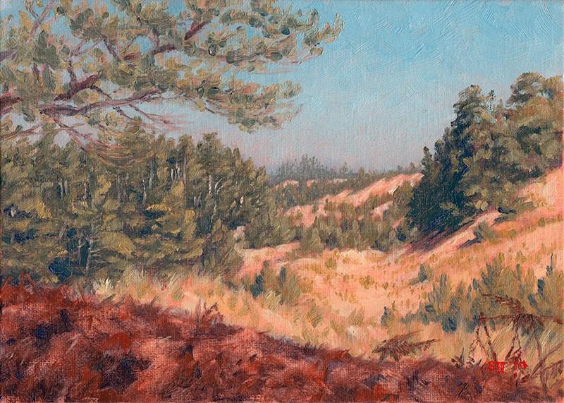 """C1552 Sand Dunes & Shore Pines (Lost Lake ACEC, Oregon Coast)"" original fine art by Steven Thor Johanneson"