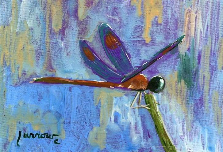 """""""Dragon Fly No. 20"""" original fine art by Sue Furrow"""