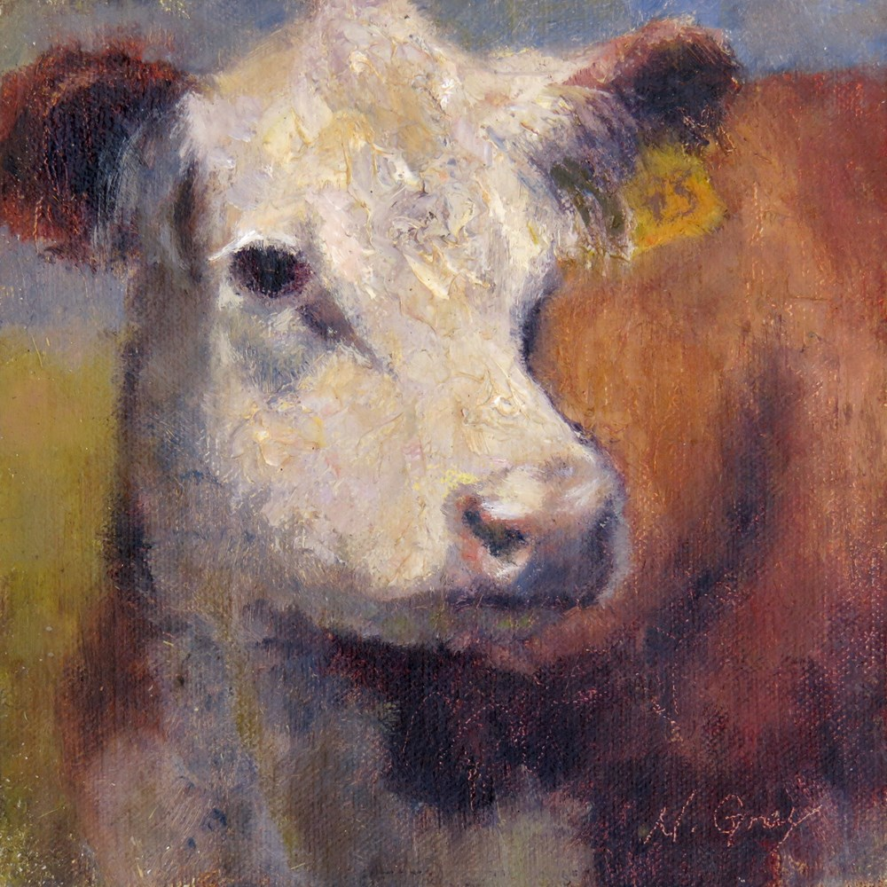 """""""Lucy the Cow"""" original fine art by Naomi Gray"""