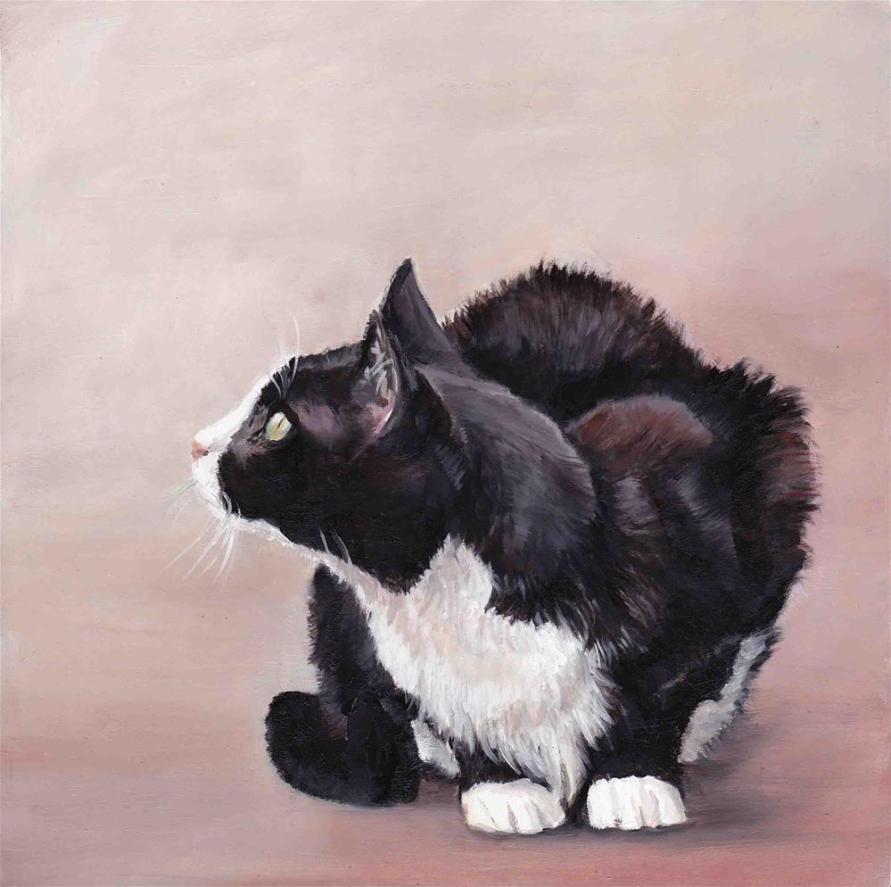 """Tuxedo Cat"" original fine art by Charlotte Yealey"