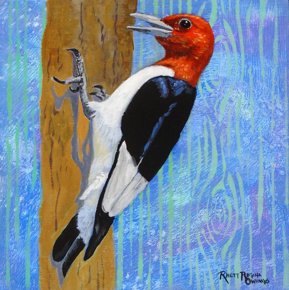 """""""Woodpecker"""" original fine art by Rhett Regina Owings"""