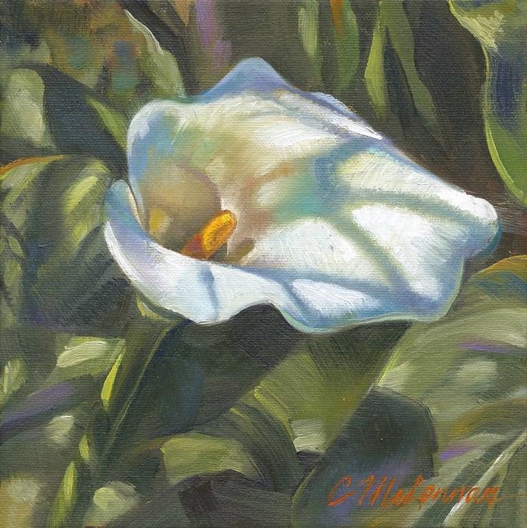 """""""Calla Shadows"""" original fine art by Connie McLennan"""