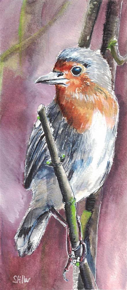 """""""3124 Robin"""" original fine art by Dietmar Stiller"""
