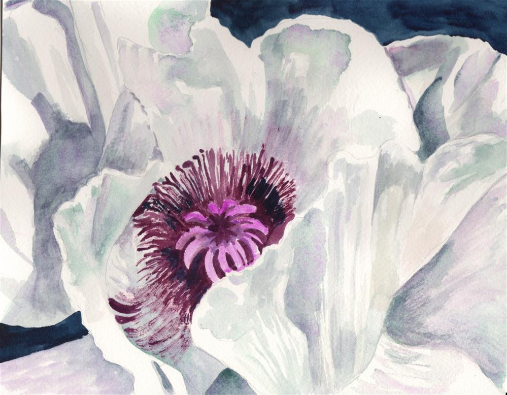 """White Poppy"" original fine art by Bunny Griffeth"