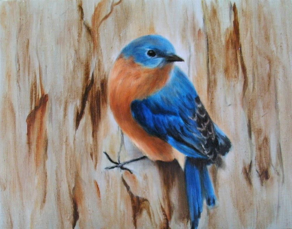 """""""Eastern Bluebird"""" original fine art by Lynn Darby"""