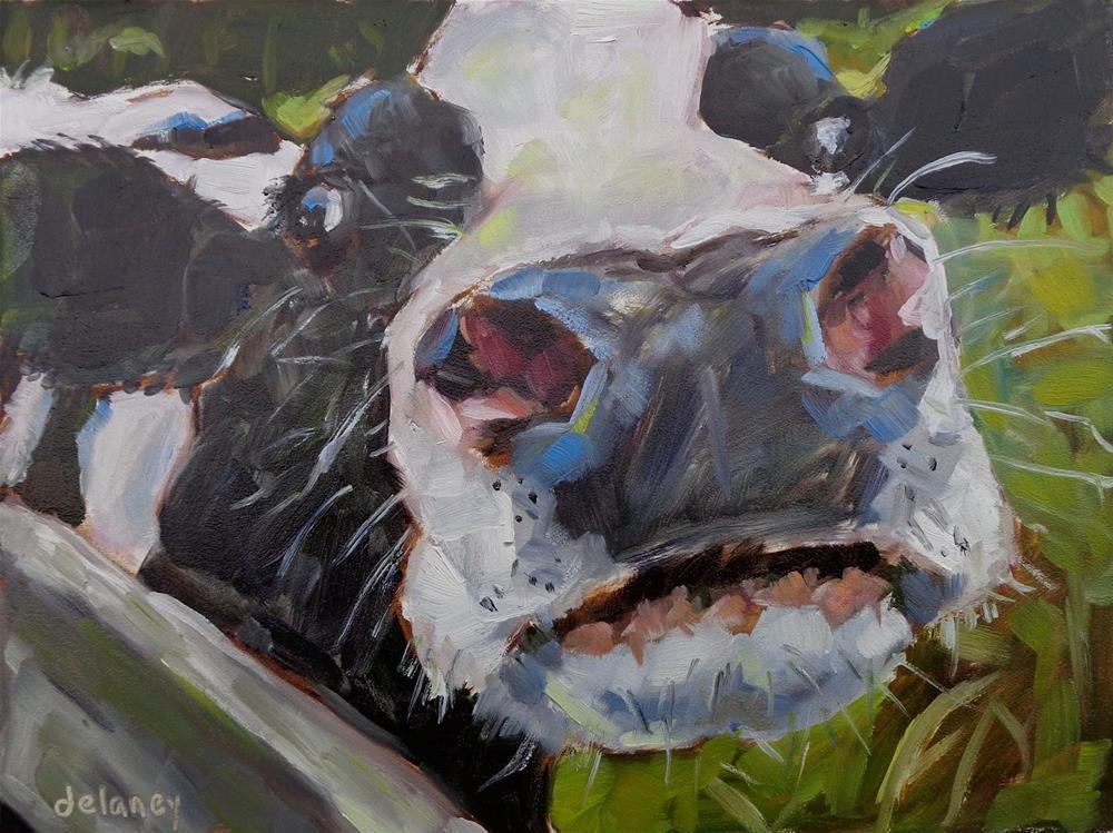 """""""Cow 147 - DANGEROUSLY BEAUTIFUL"""" original fine art by Jean Delaney"""