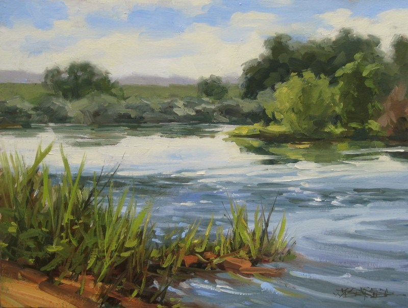 """Snake River"" original fine art by Karen Werner"