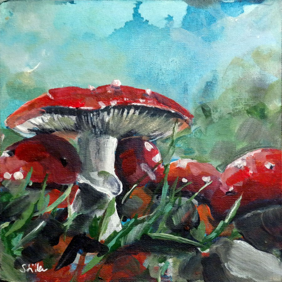 """2252 Fly Amanita Time"" original fine art by Dietmar Stiller"
