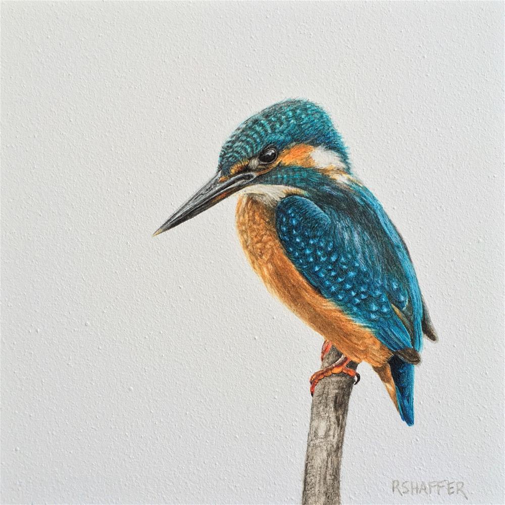 """Kingfisher"" original fine art by Renay Shaffer"