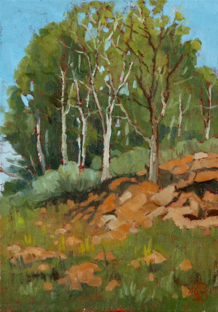"""RedRock Spring"" original fine art by Carol Granger"