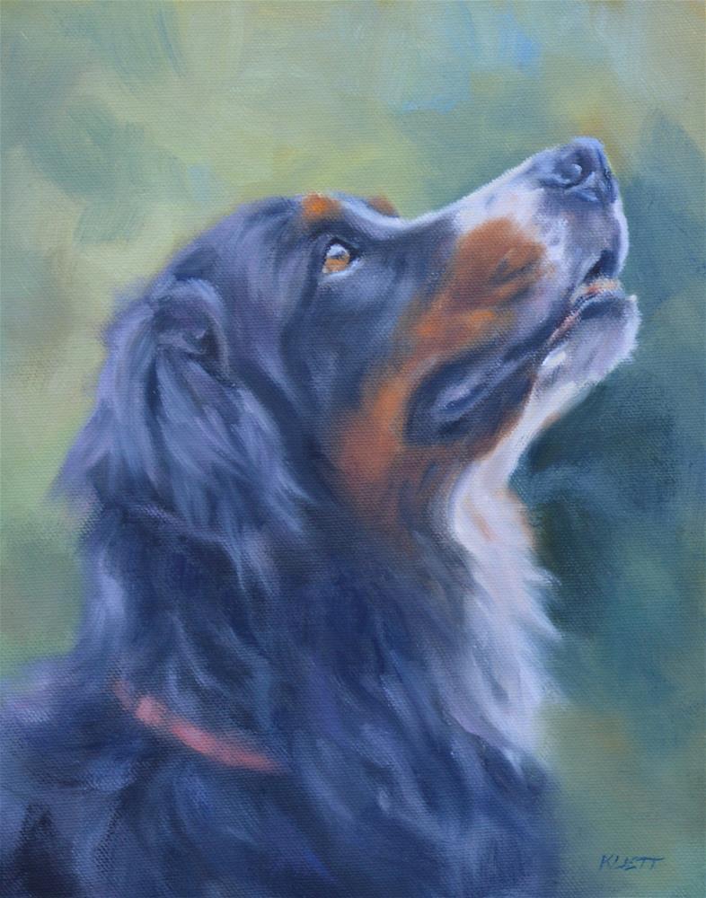"""Bernese Mountain Dog"" original fine art by Tracy Klett"