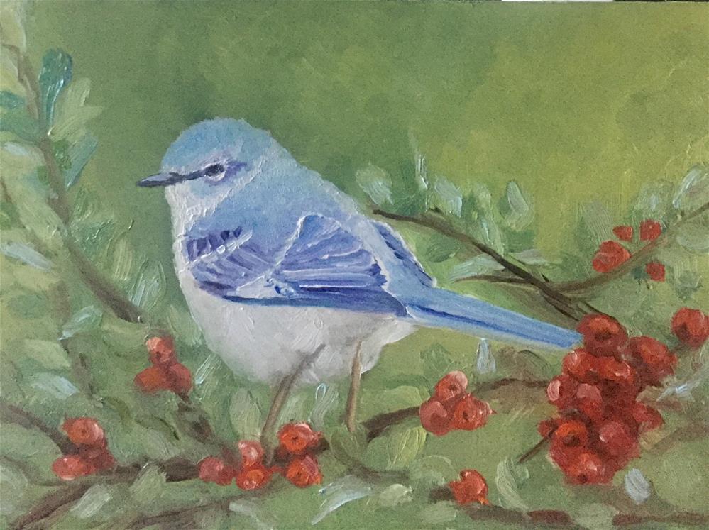 """""""western blue bird"""" original fine art by Carole Chalmers"""