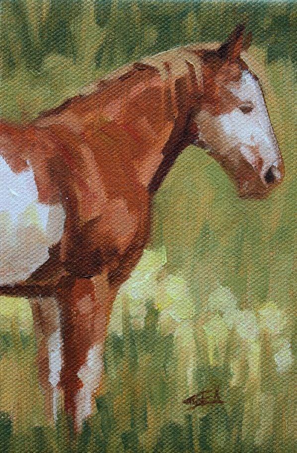 """""""Meadow XIV"""" original fine art by Susan Ashmore"""