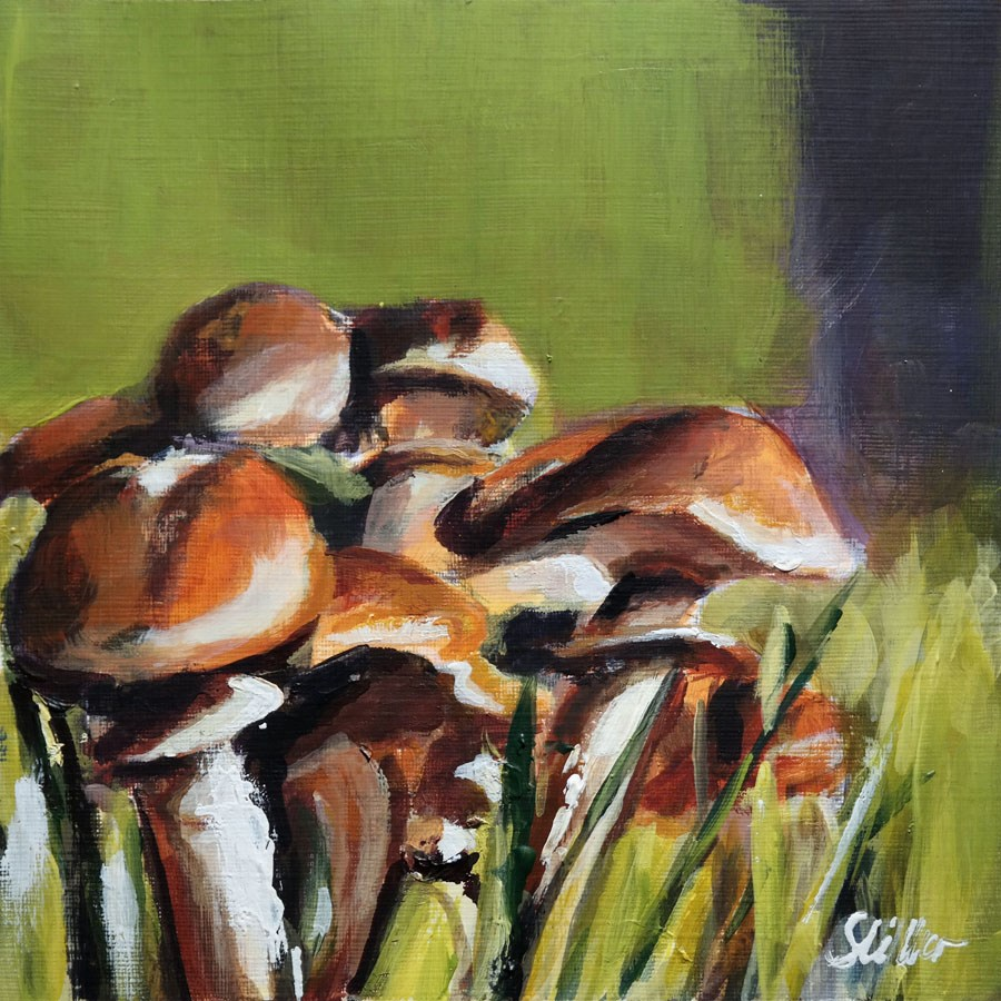 """1893 Mushroom Season 6"" original fine art by Dietmar Stiller"