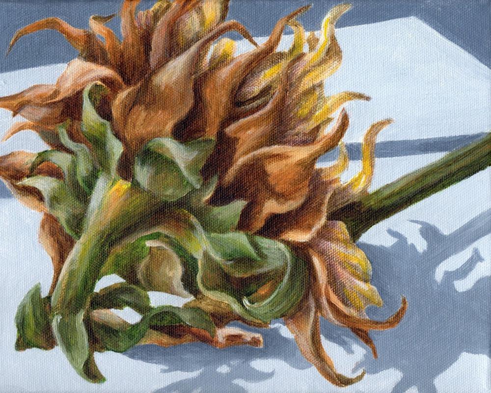 """Restless"" original fine art by Debbie Shirley"