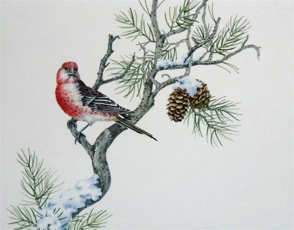 """Pine Grosbeak"" original fine art by Jean Pierre DeBernay"