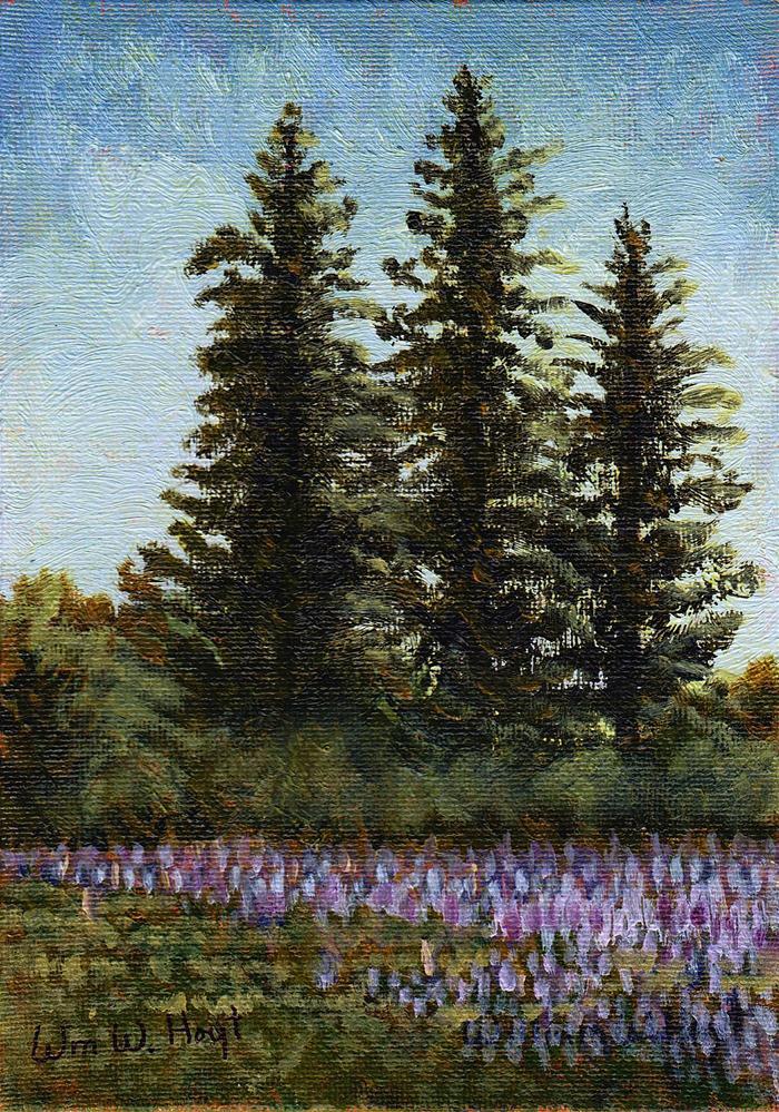 """Lupine at the Olsen's"" original fine art by William W. Hoyt"