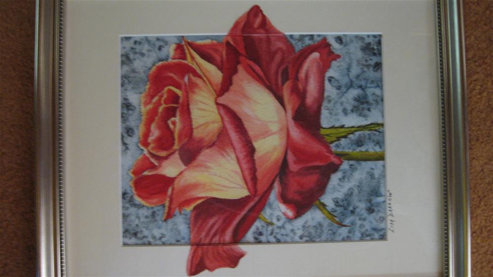 """Red Rose"" original fine art by Lisa Darrow"