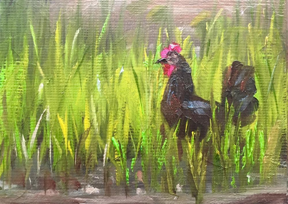 """""""Black Hen"""" original fine art by Gary Bruton"""