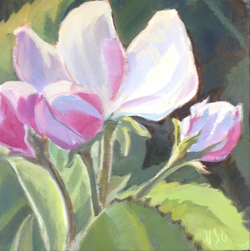 """Apple Blossoms II"" original fine art by Valerie Orlemann"