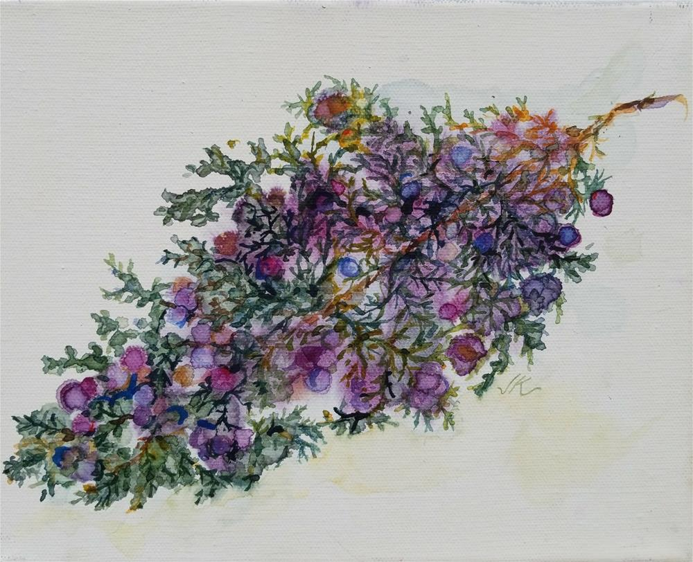 """Juniper"" original fine art by Jean Krueger"
