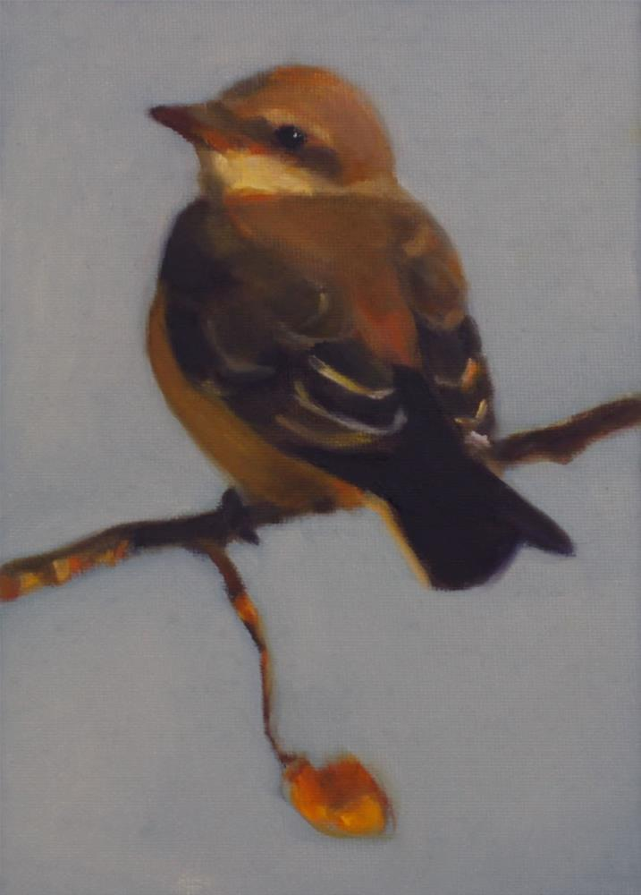 """""""Baby Kingbird"""" original fine art by Pamela Poll"""