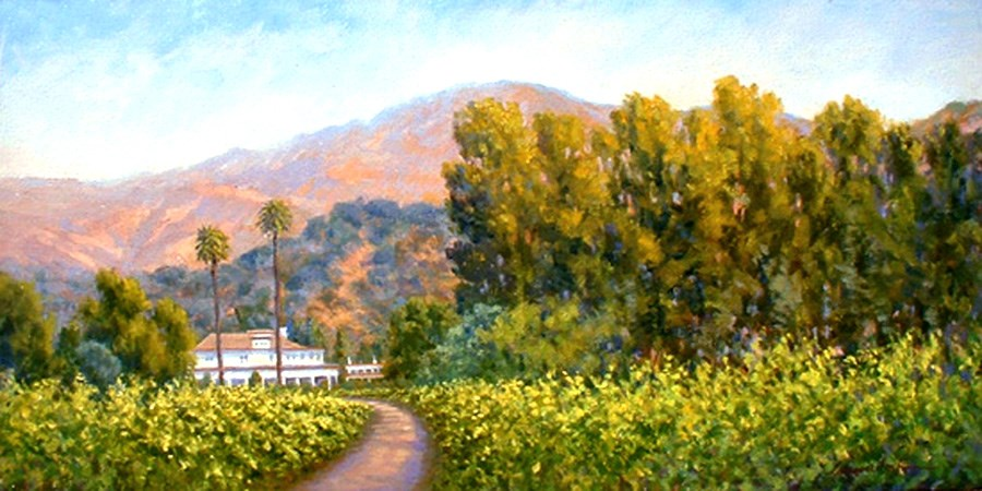 """NAPA VALLEY VINEYARD"" original fine art by Dj Lanzendorfer"