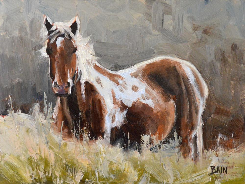 """Paint in Pasture"" original fine art by Peter Bain"
