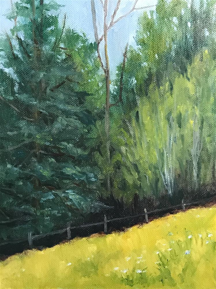 """my back yard"" original fine art by Betty Argiros"