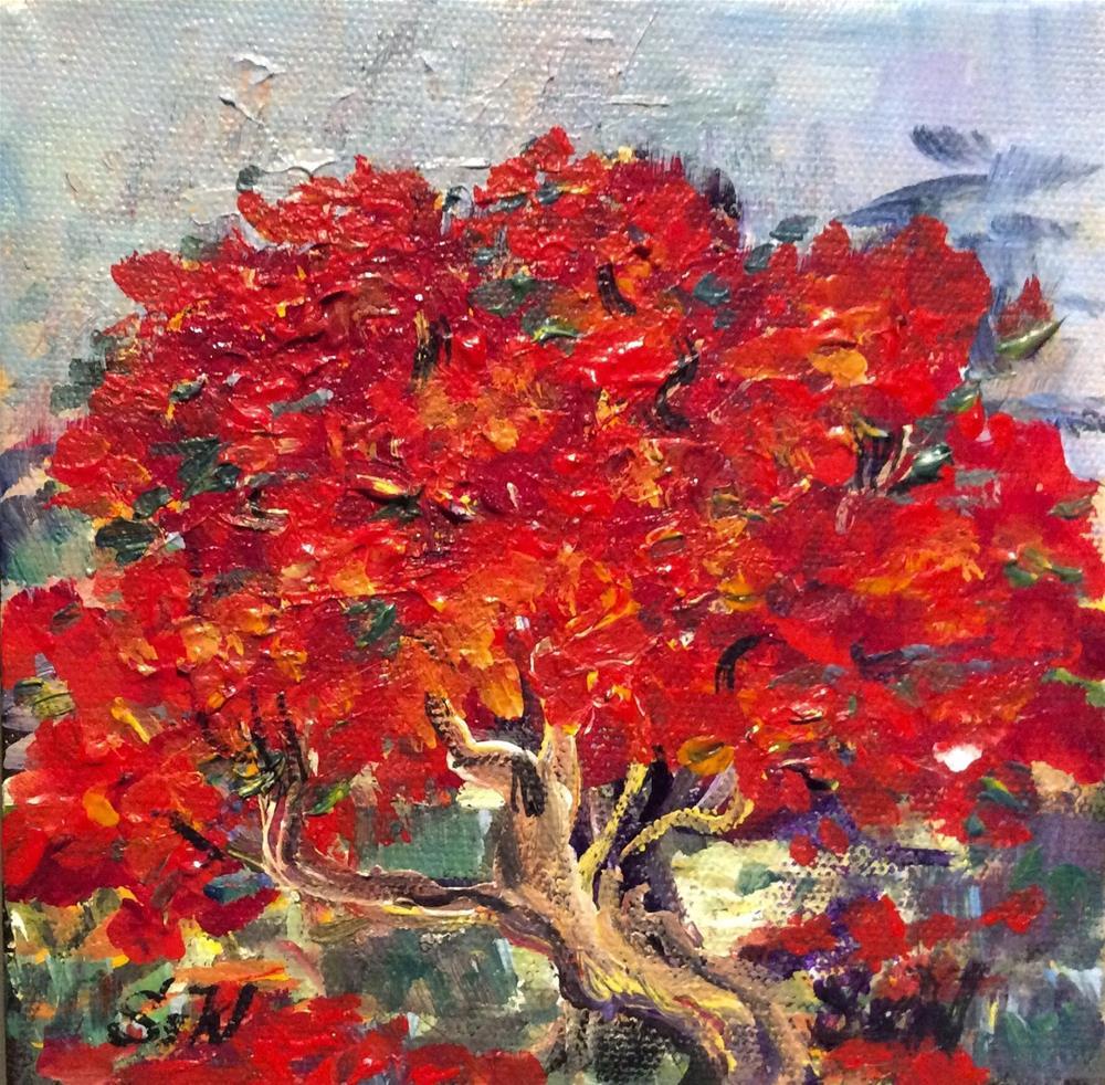 """Poinciana tree Bermuda"" original fine art by Sonia von Walter"