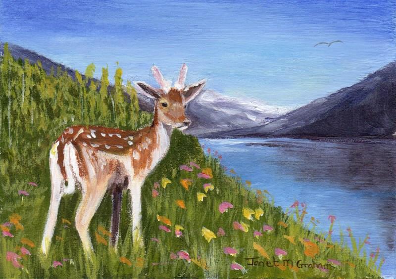 """""""Little Buck ACEO"""" original fine art by Janet Graham"""