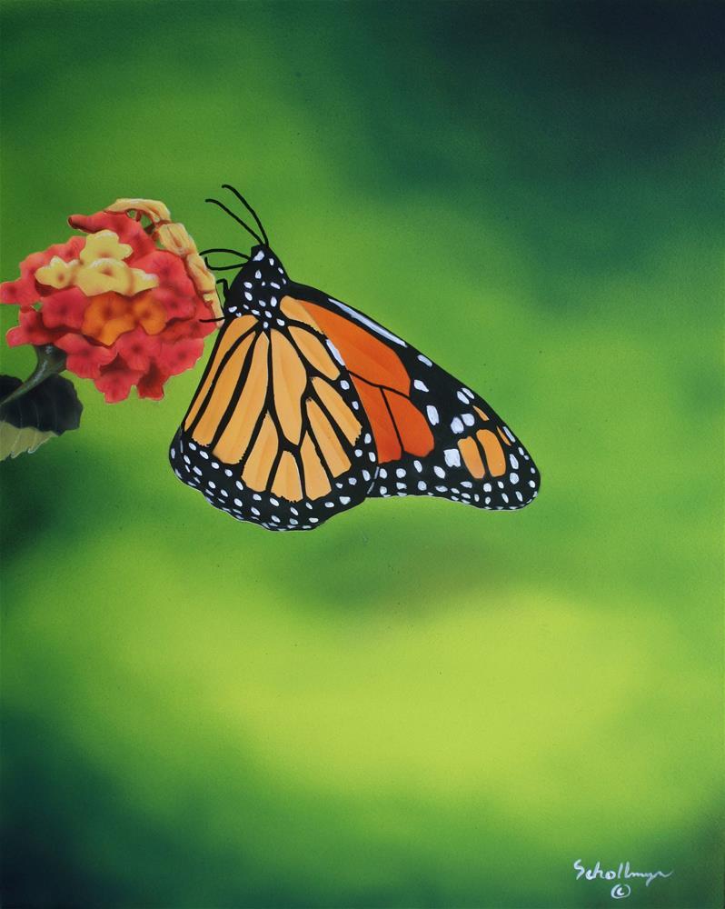 """Summer Butterfly"" original fine art by Fred Schollmeyer"