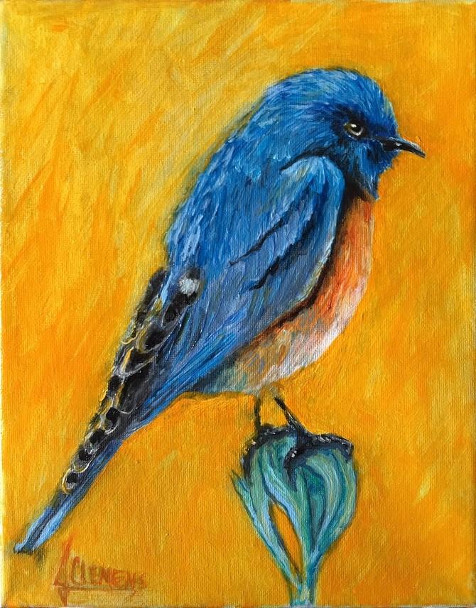 """""""Bird study-   Blue Bird"""" original fine art by Jolynn Clemens"""