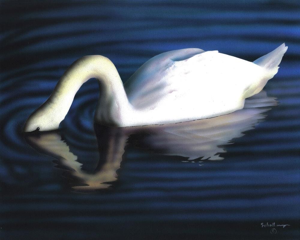 """Evening Dip"" original fine art by Fred Schollmeyer"