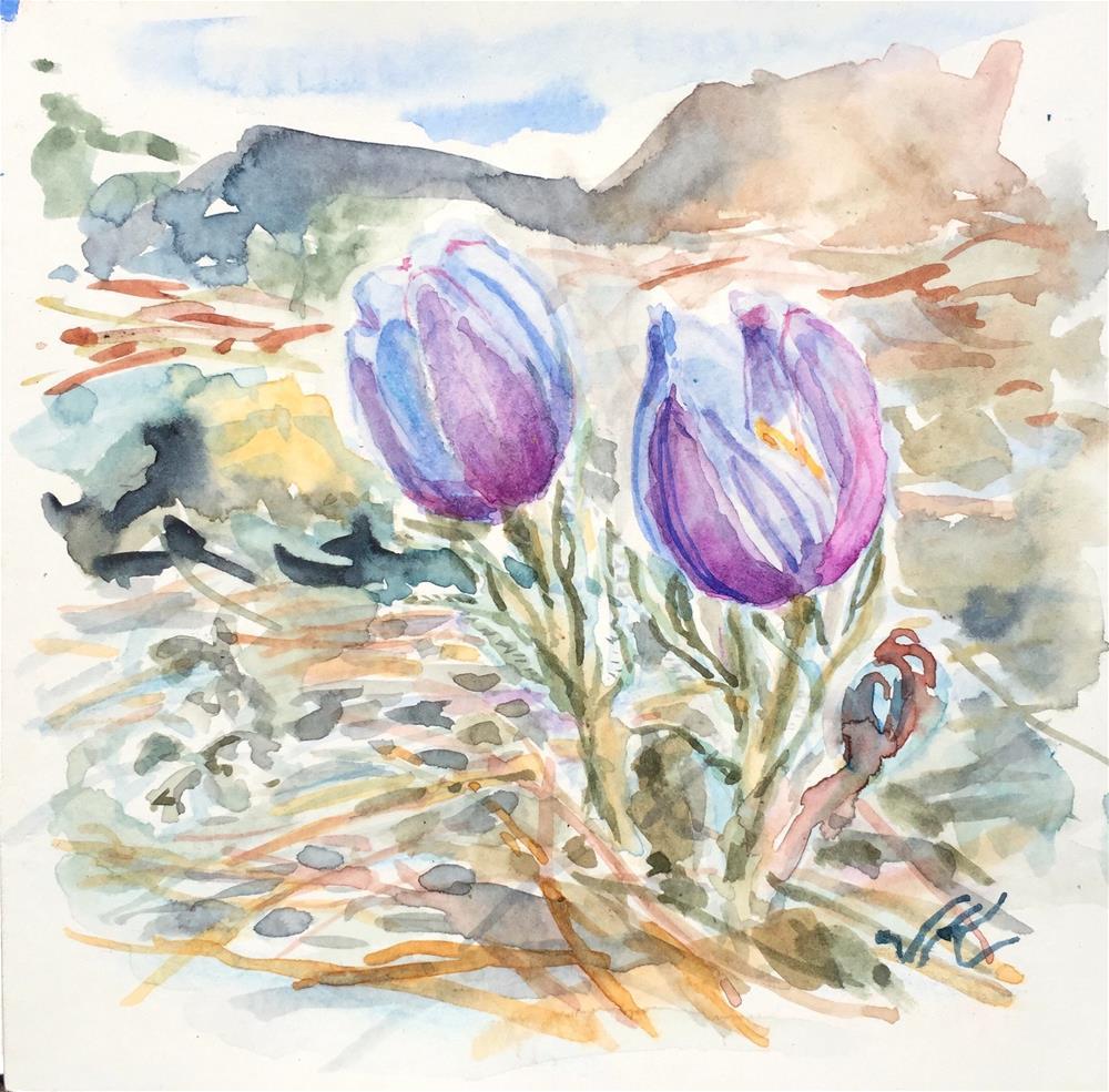 """Pasqueflower"" original fine art by Jean Krueger"