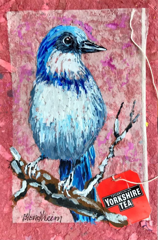 """Florida Scrub Jay"" original fine art by Linda Blondheim"