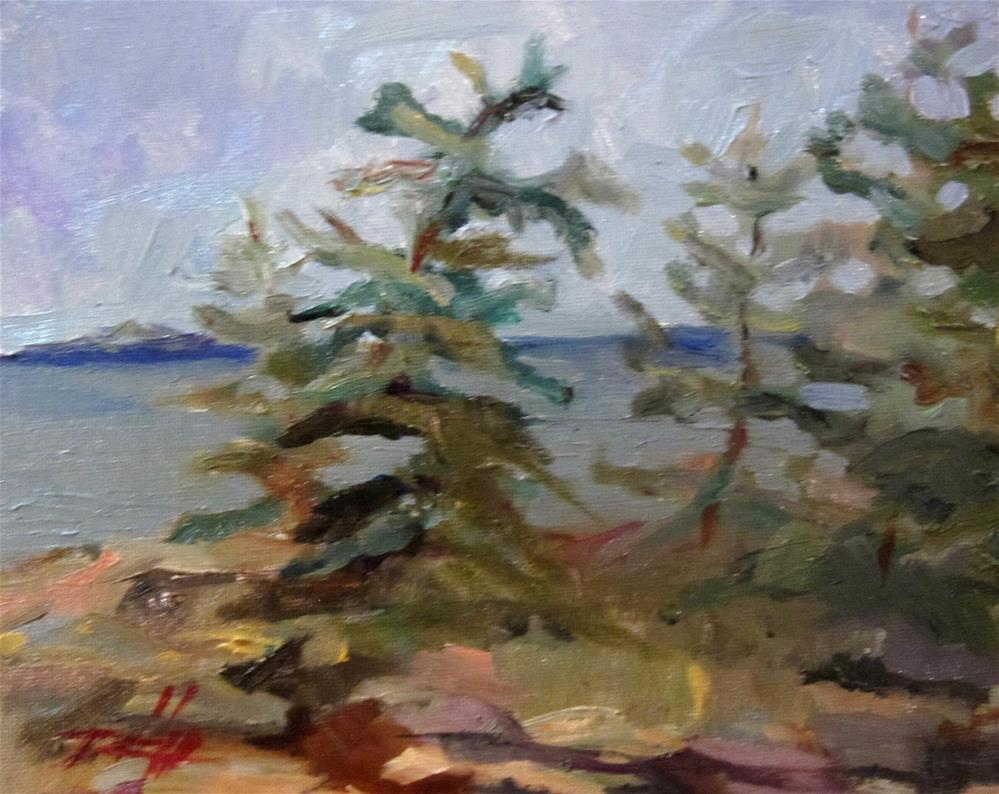 """Schoodic Point Acadia National Park Maine"" original fine art by Delilah Smith"