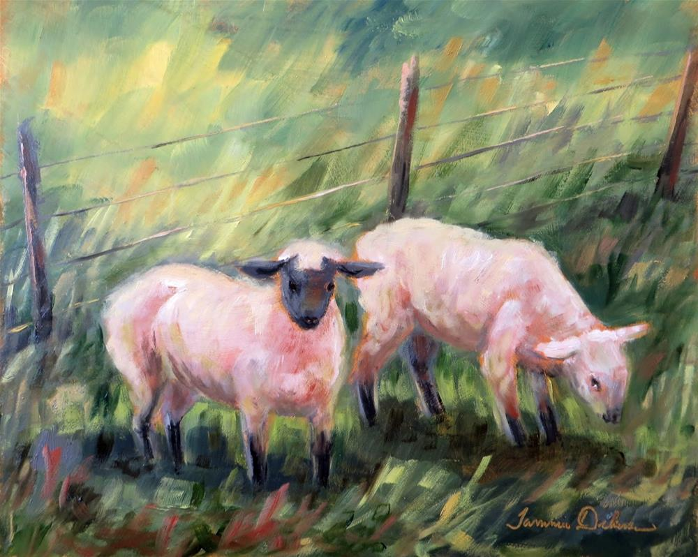 """""""A Pair of Sheep"""" original fine art by Tammie Dickerson"""
