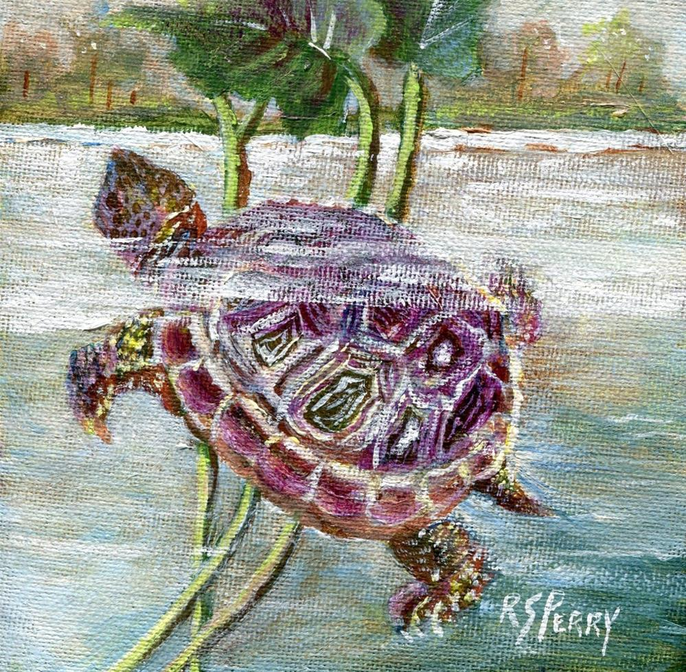 """""""Turtle Two"""" original fine art by R. S. Perry"""