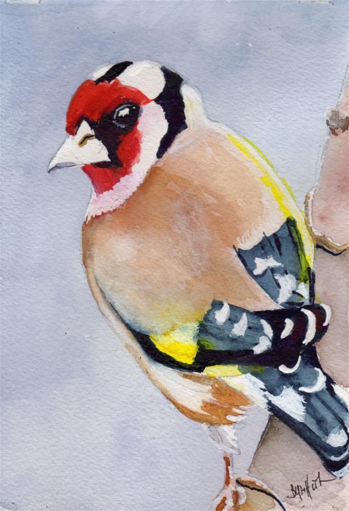 """Colorful Bird"" original fine art by Bunny Griffeth"
